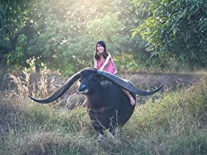 Bilder Asiatische Rinder Gras Horn Lächeln Sitzend Tiere Mädchens
