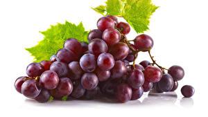 Bilder Weintraube Großansicht Weißer hintergrund das Essen