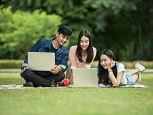 Bilder Mann Studentin Sitzend Gras Drei 3 Brünette Notebook Mädchens