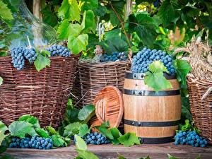 Fotos Weintraube Fass Lebensmittel