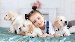 Wallpaper Dog Little girls Puppy Glance Lovely child