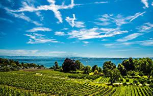 Bilder Deutschland Landschaftsfotografie See Felder Himmel Strauch Lake Constance Hagnau