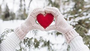 Bilder Winter Valentinstag Herz Hand Fausthandschuhe