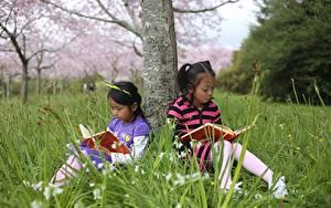 Fotos Asiatische Baumstamm Kleine Mädchen Buch Sitzend Zwei Gras Kinder