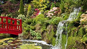 Pictures England Gardens Pond Waterfalls Bridges Crag Bush Mount Pleasant Gardens Chester Nature