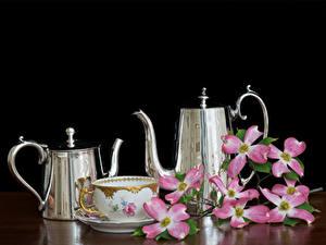 Bilder Flötenkessel Schwarzer Hintergrund Tasse Lebensmittel