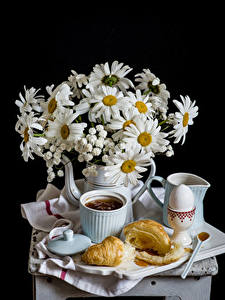 Bilder Stillleben Sträuße Kamillen Croissant Schwarzer Hintergrund Tasse Eier Lebensmittel Blumen