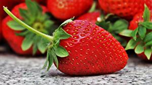Fotos Erdbeeren Großansicht