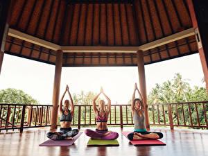 Bilder Lotussitz Drei 3 Joga Sitzt Hand Körperliche Aktivität Mädchens