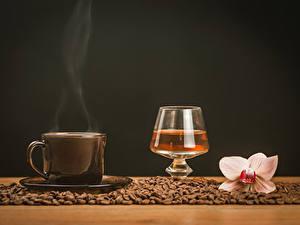 Bilder Stillleben Kaffee Alkoholische Getränke Orchideen Tasse Getreide Dampf