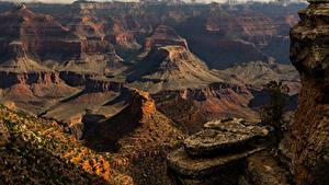 Bilder USA Grand Canyon Park Park Felsen Natur