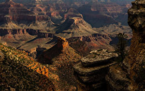 Bilder USA Grand Canyon Park Park Felsen Natur