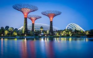 Fotos Singapur Park Abend Bucht Design Gardens by the Bay
