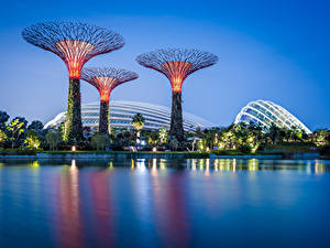 Fotos Singapur Park Abend Bucht Design Gardens by the Bay