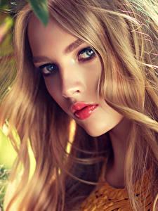 Bilder Blondine Gesicht Blick Schön Dunkelbraun