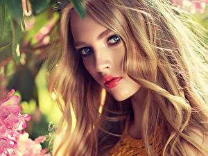 Bilder Blondine Gesicht Blick Schön Dunkelbraun junge frau