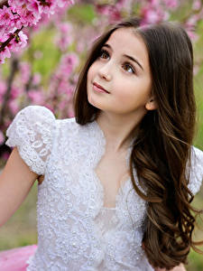 Picture Flowering trees Little girls Hands Beautiful Children