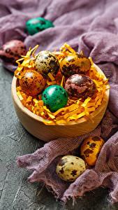 Hintergrundbilder Ostern Feiertage Ei Stroh