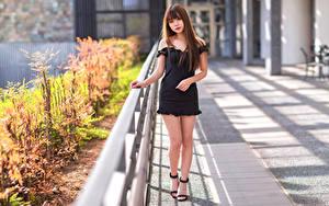 Bilder Asiatisches Pose Kleid Bein Starren Mädchens