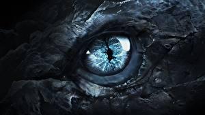 Fotos Augen Drachen Hautnah Game of Thrones Fantasy Film