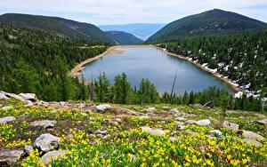 Bilder Kanada Landschaftsfotografie See Wälder Hügel Carlton Lake Natur