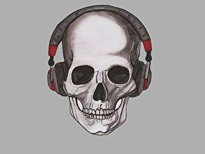 Hintergrundbilder Cranium Gezeichnet Kopfhörer Grauer Hintergrund