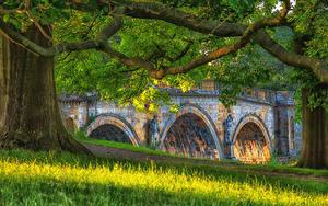 Fotos Vereinigtes Königreich Brücken Skulpturen Ast Gras Chatsworth