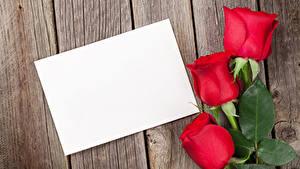Hintergrundbilder Valentinstag Rosen Bretter Vorlage Grußkarte Rot Blumen