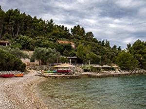 Bilder Kroatien Küste Bootssteg Sand Bäume
