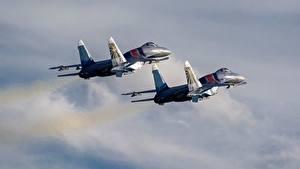 Fotos Flugzeuge Jagdflugzeug Soukhoï Su-30 Russische Zwei Flug SM Luftfahrt