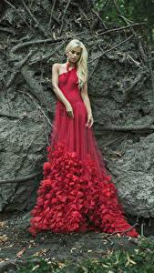 Fotos Blond Mädchen Kleid Rot Mädchens