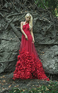 Fotos Blond Mädchen Kleid Rot
