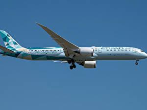 Bilder Boeing Flugzeuge Verkehrsflugzeug Seitlich Dreamliner, 787-10, Etihad Airways
