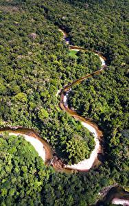 Fotos Brasilien Wald Fluss Von oben Amazon Jungle Natur