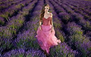 Hintergrundbilder Lavendel Acker Kleid Blick Elle Tan Mädchens