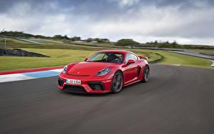 Bilder Porsche Rot Bewegung 718 (982) Cayman GT4 Autos