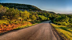 Fotos Vereinigte Staaten Wege Texas Hügel Strauch Llano Natur