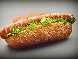 Bilder Fast food Hotdog Brötchen Frankfurter Würstel Großansicht