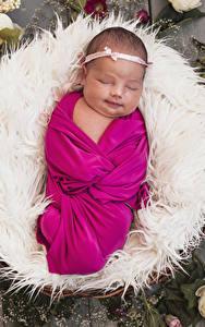 Hintergrundbilder Rosen Baby Schlaf Kinder