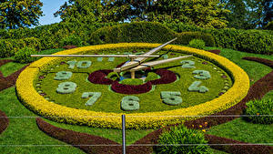 Image Switzerland Park Clock Design Shrubs Lawn Geneva Nature
