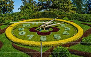 Fotos Schweiz Parks Uhr Design Strauch Rasen Geneva Natur