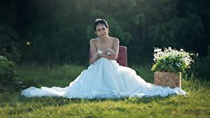 Pictures Bride Brunette girl Sitting Frock Grass Noces
