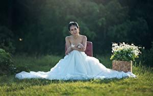 Bilder Bräute Brünette Sitzt Kleid Gras Heirat Mädchens