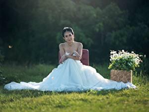 Bilder Brautpaar Brünette Sitzend Kleid Gras Heirat Mädchens