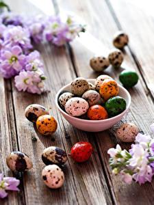 Hintergrundbilder Feiertage Ostern Levkojen Bretter Ei