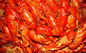 Images Seafoods Crayfish Many Food