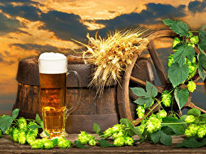 Fotos Bier Fass Echter Hopfen Becher Schaum Spitzen das Essen