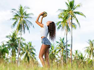 Fotos Kokosnuss Braunhaarige Shorts junge frau