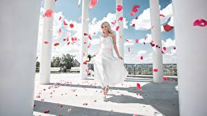 Bilder Kleid Blütenblätter Säulen Maxim Tumanov Mädchens