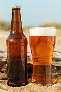 Bilder Bier Flasche Trinkglas Schaum Lebensmittel